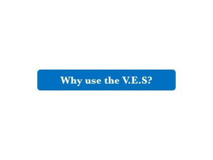 VES Webinar.002.jpeg