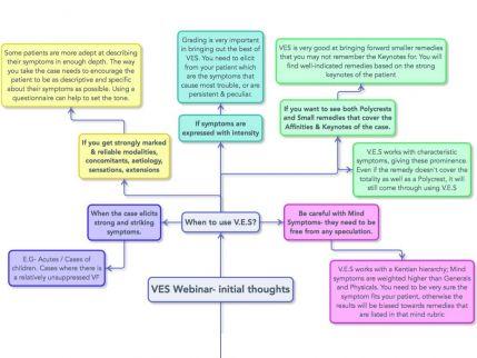VES Webinar.004.jpeg