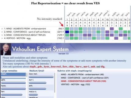 VES Webinar.011.jpeg