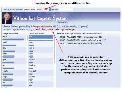 VES Webinar.013.jpeg