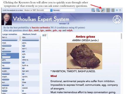 VES Webinar.014.jpeg